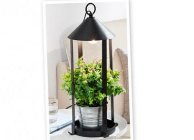 Stojak na rośliny z oświetleniem z Biedronki