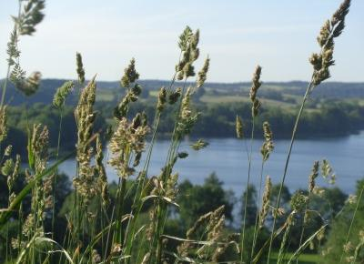 Reszta Polski i świata : Chmielno i okolica - Muzeum Ceramiki, jeziora, wspaniałe krajobrazy.