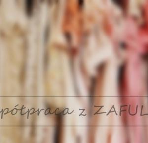 #28 Współpraca z ZAFUL - Kanooshi