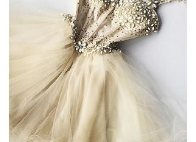 Beaded Flowers Champagne Homecoming Dresses 2017 cheap Organza Short Appliques Hoco Dress_2017 Homecoming Dresses_Wedding Dresses | Prom Dresses | Evening Formal Gowns | Suzhoudress.com