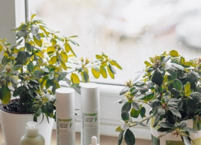 Better skin in 30-days with Swanicoco Skin Care | KHERBLOG | All about korean & natural beauty with a dose of lifestyle