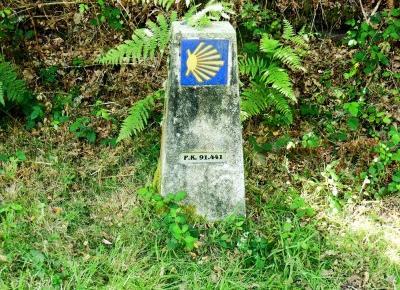 Gdzie szukać informacji o Camino de Santiago?