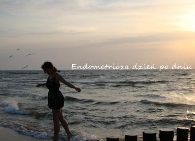 Koci punkt widzenia: Dzień po dniu - jak wygląda endometrioza?