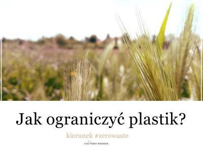 Koci punkt widzenia: 12 prostych sposobów na ograniczenie plastikowych śmieci | kierunek #zerowaste