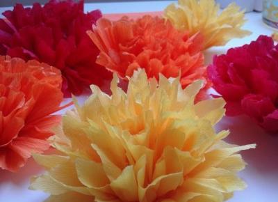 Koci punkt widzenia: Kwiaty z bibuły - szybkie i dziecinnie proste