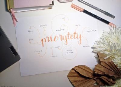 Koci punkt widzenia: Priorytety - po co je mieć?