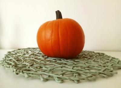 Koci punkt widzenia: Co warto zrobić jesienią?