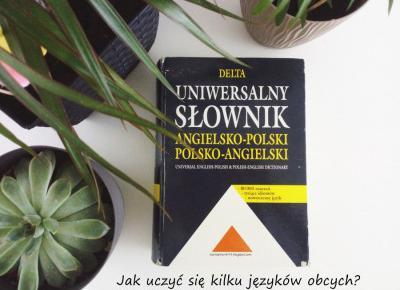 Koci punkt widzenia: Jak uczyć się kilku języków obcych naraz?