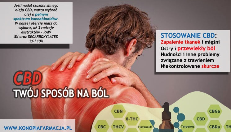 Olej CBD - Twój sposób na ból
