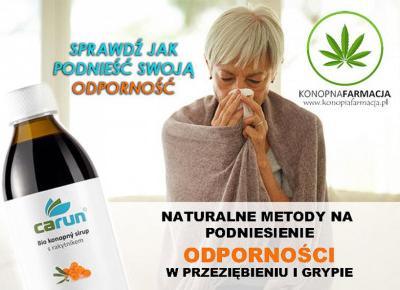 Naturalne produkty konopne - Olej CBD, herbata konopna, maść konopna - Konopna Farmacja Poznań