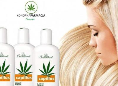 Sprawdź szampon konopny z kofeiną na porost włosów stymulujący cebulki do wzrostu.