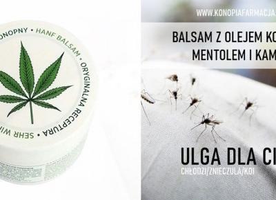 Komary – Sposób na ukąszenia … Balsam konopny, który chłodzi, znieczula, koi !