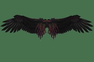 Upadły Anioł – Rozdział 6