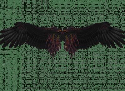 Upadły Anioł — Rozdział 4