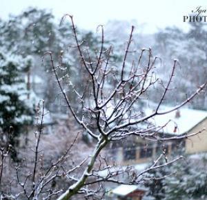 Pierwszy śnieg - oficjalnie zima