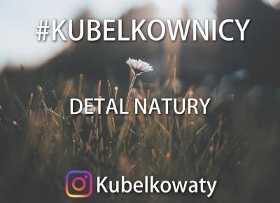 VLOG#50 - #kubelkownicy - Detal Natury - Wyzwanie fotograficzne
