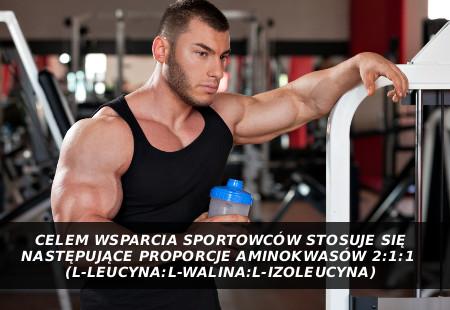 BCAA! Dlaczego te trzy aminokwasy: leucyna, izoleucyna, walina zyskały miano najważniejszych w sporcie?