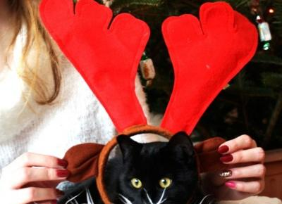 I love beautiful things!: Blogmas #3 Merry Christmas!