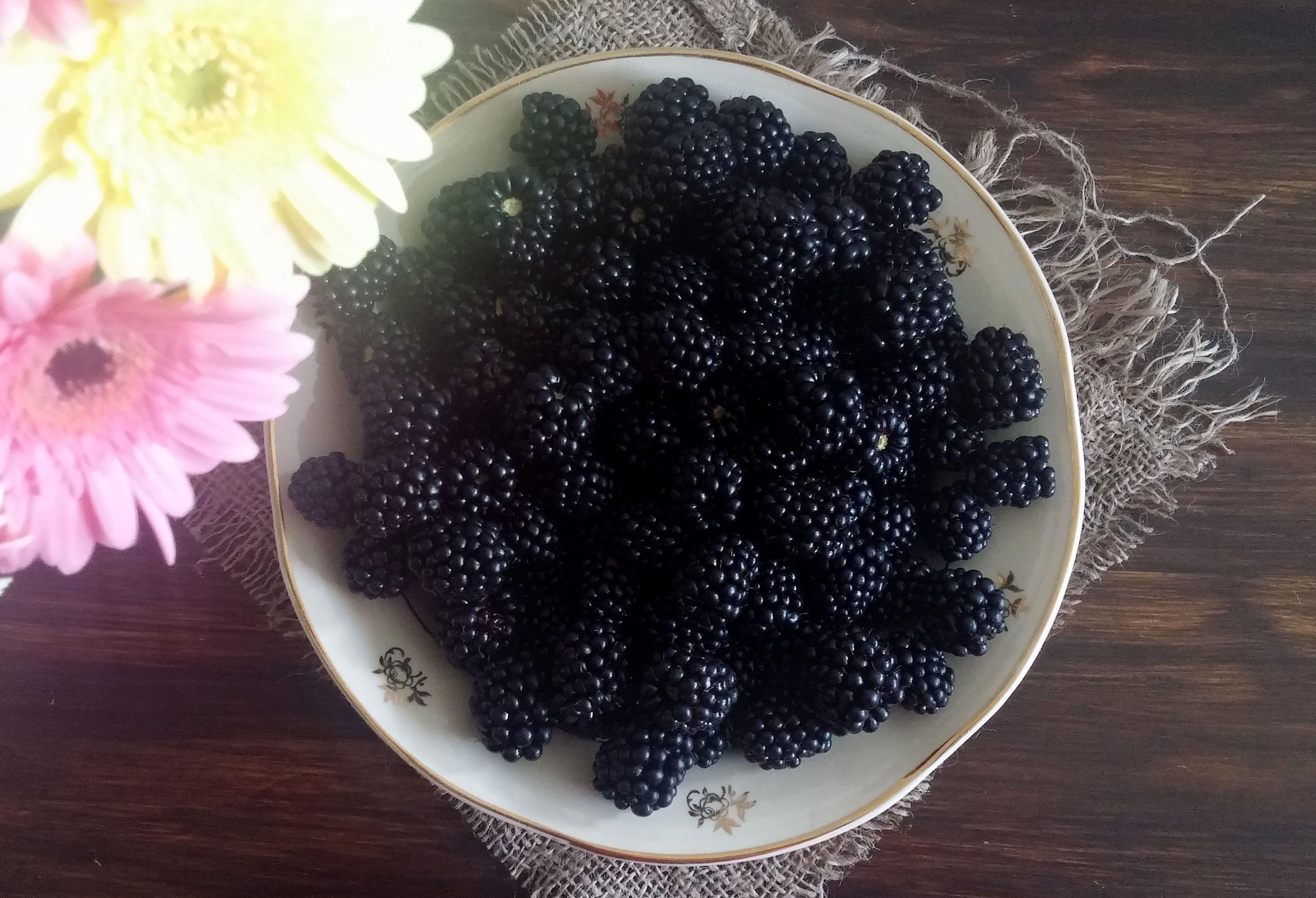 Jeżyny - czarne diamenty prosto z lasu (Superfood) - Ewelajna