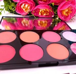Makeup Revolution - Review Ultra Blush Palette Sugar