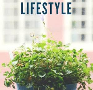 Zero Waste Lifestyle  - Łodyżka