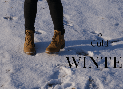 A.L.I.S.: Cold Winter
