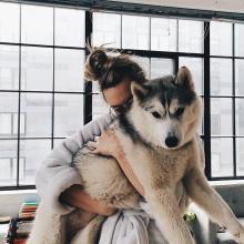doggy   We Heart It