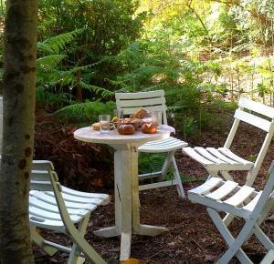Couchsurfing na Teneryfie – w górach, w środku lasu, z dala od cywilizacji… | Pełną Parą