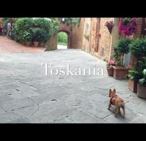Toskania 2016 | Martoszka