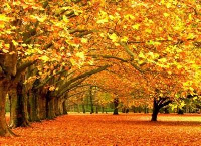 Idealny look na jesień!