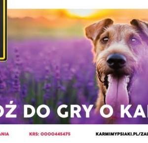 Zaloguj się do pomagania z miauhau.pl