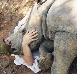 Kłusownicy zabili mu mamę. Małym nosorożcem zaopiekowała się wolontariuszka