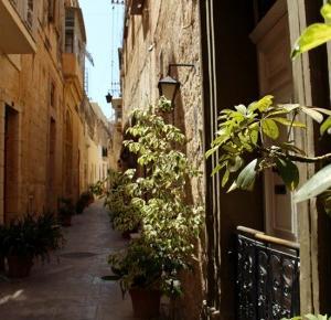 Milion i Oliwka: Malta z ATASem