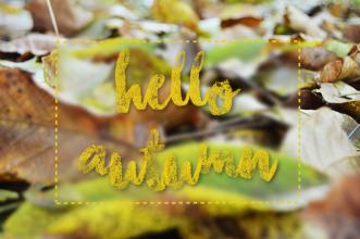Jesienną porą | Fabryka Mięty