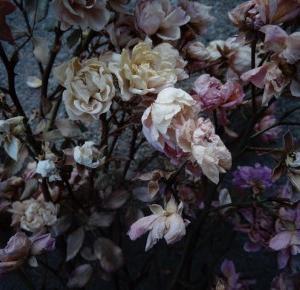 Kwiaty Grzechu to najlepsze co dziś przeczytasz