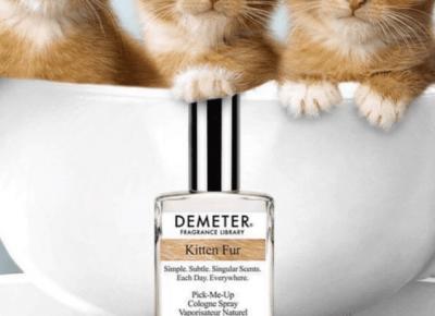 Pierwsze perfumy o zapachu kociego futerka! Miauuuu