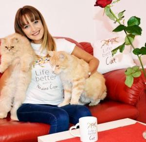 10 Powodów, dla których warto mieć kota     |         MONIQUE REHMUS