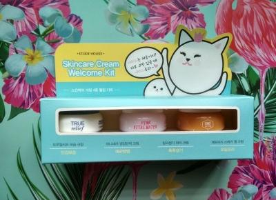 Recenzja - Etude House Skincare cream welcome kit | N. o kosmetykach