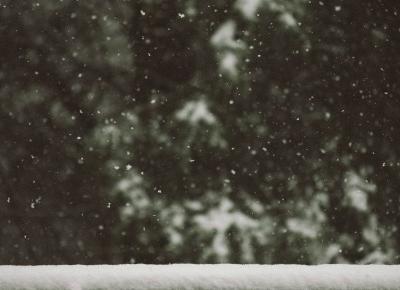 Zmieniam, co mnie oszpeca. | Podsumowanie roku cz. I | Neoabiturientka