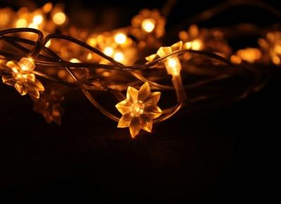 Nicole's blog: When Christmas is coming   photos only