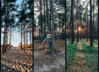 Mierzeja Sarbska - piękne miejsce blisko Łeby  - Nicole's travel journal - podróże i lifestyle