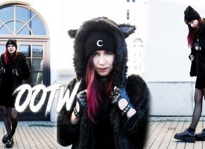 OOTW: I'm a cat • Ola Brzeska