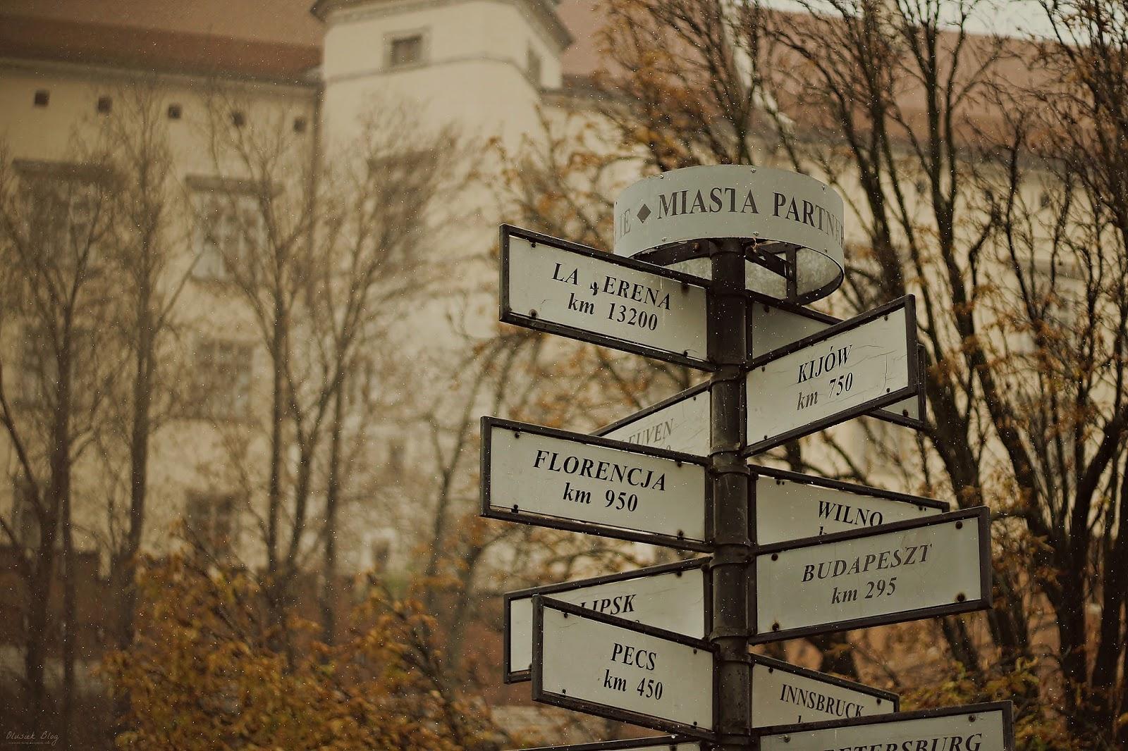 11.11.2016   purposetour in Cracow