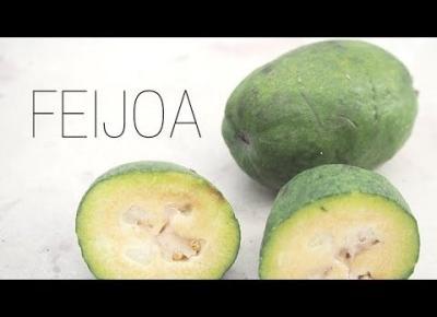 FEIJOA | FRUIT HUNTERKA #2