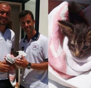 Uratowali kota przeprowadzając reanimację!