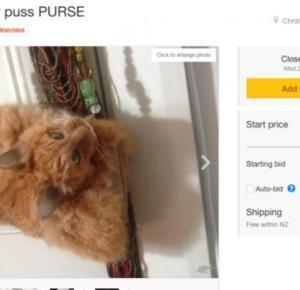 Kopertówka wykonana z kota do licytacji!