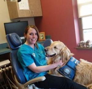 Pies pracuje u dentysty, żeby odstresować pacjentów!