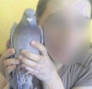 Łapią gołębie i zjadają je na obiad!