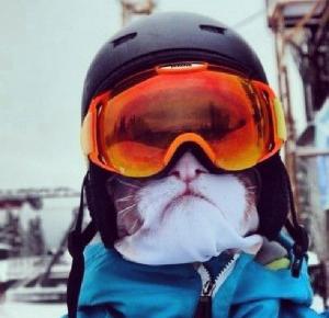 Maski w zwierzęce wzory podbijają stoki narciarskie!