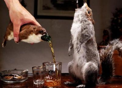 Piwo warte kilkadziesiąt milionów podawane w wiewiórce!
